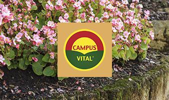 campusvital