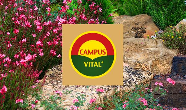 producto Campus Vital