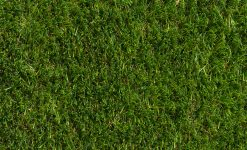 Cesped artificial Lynxturf Evolution