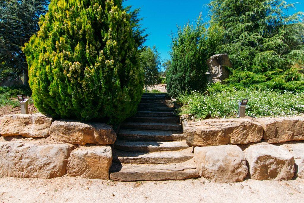 Renovación completo de jardín en Sant Cugat